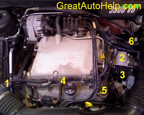 gm v engine sensor locations picture