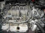 GM 3.8l 3800 V6 serpentine belt replacement routing picture.
