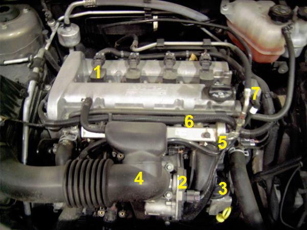 GM 2.2 liter And 2.4L Engine Sensor LocationsGreatAutoHelp.com